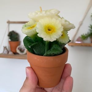Potted Flowers Candle